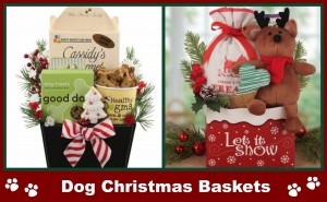 dog christmas gift baskets